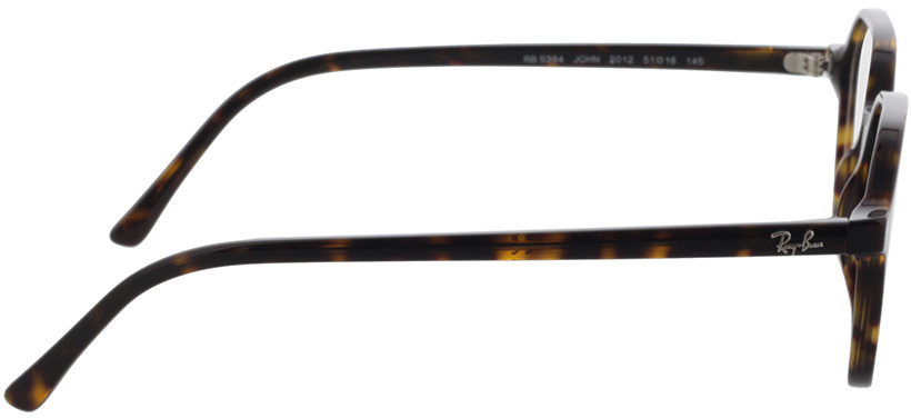 Picture of glasses model Ray-Ban RX5394 2012 51-18 in angle 90