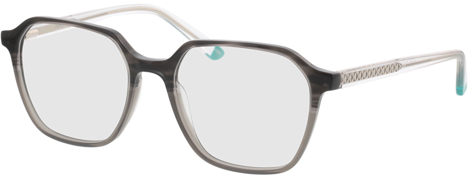 Picture of glasses model Fermo-grau-verlauf/transparent in angle 330