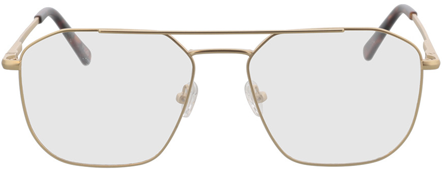 Picture of glasses model Berry-gold/havana in angle 0