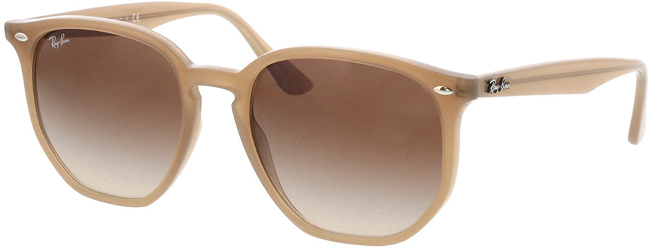 Picture of glasses model Ray-Ban RB4306 616613 54-19