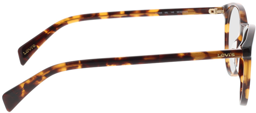 Picture of glasses model Levi's LV 1005 05L 50-22 in angle 90