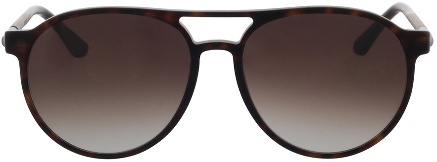 Picture of glasses model Wood Fellas Sunglasses Core curled/havana 56-16 in angle 0