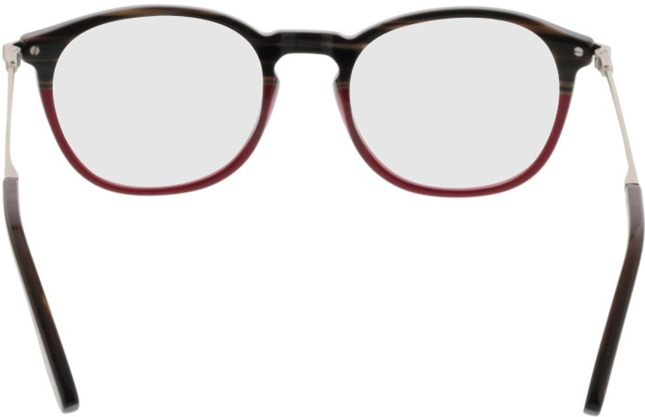 Picture of glasses model Comma70020 72 braun/rot-meliert/silber 49-20 in angle 180