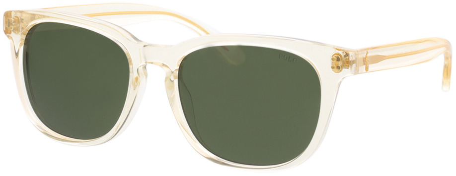 Picture of glasses model Polo Ralph Lauren PH4150 503471 54-18 in angle 330