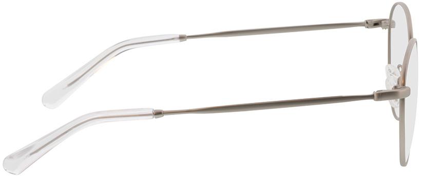 Picture of glasses model Vanda-matt silber in angle 90