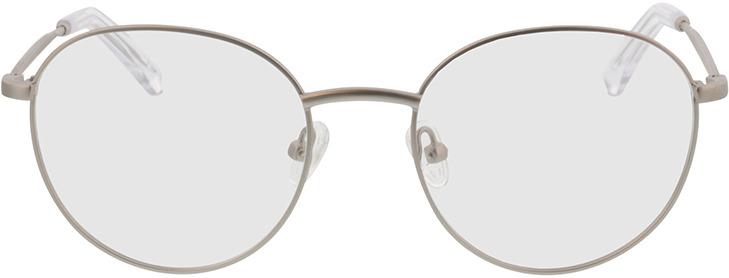 Picture of glasses model Vanda-matt silber in angle 0