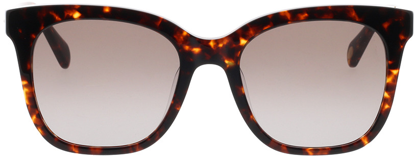 Picture of glasses model Fossil FOS 2098/G/S 086 53-20 in angle 0
