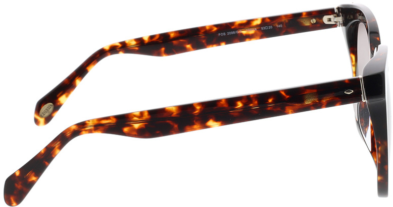 Picture of glasses model Fossil FOS 2098/G/S 086 53-20 in angle 90