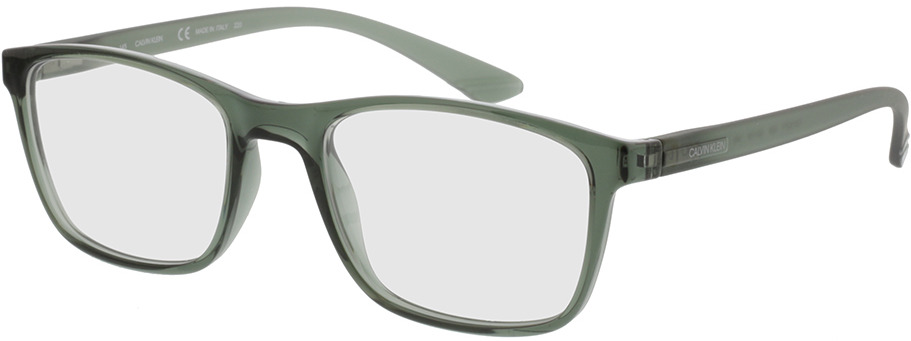 Picture of glasses model Calvin Klein CK19571 329 52-19 in angle 330