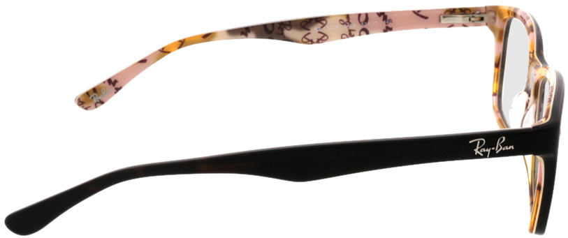 Picture of glasses model Ray-Ban RX5228 5409 53 17 in angle 90