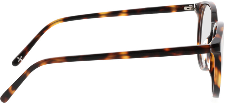 Picture of glasses model Topaz-braun-meliert in angle 90