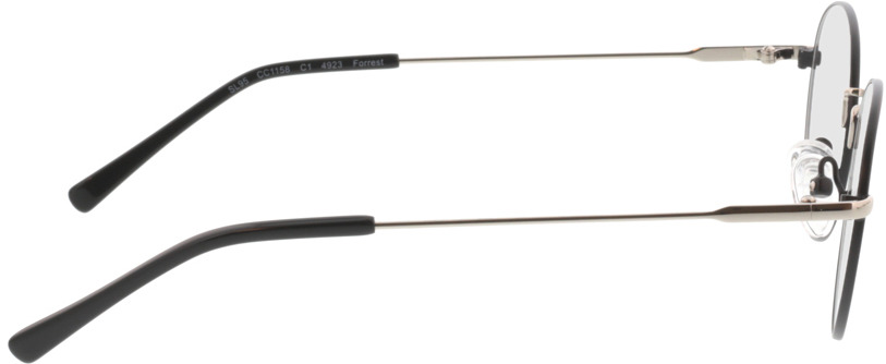 Picture of glasses model Forrest-matt-schwarz in angle 90