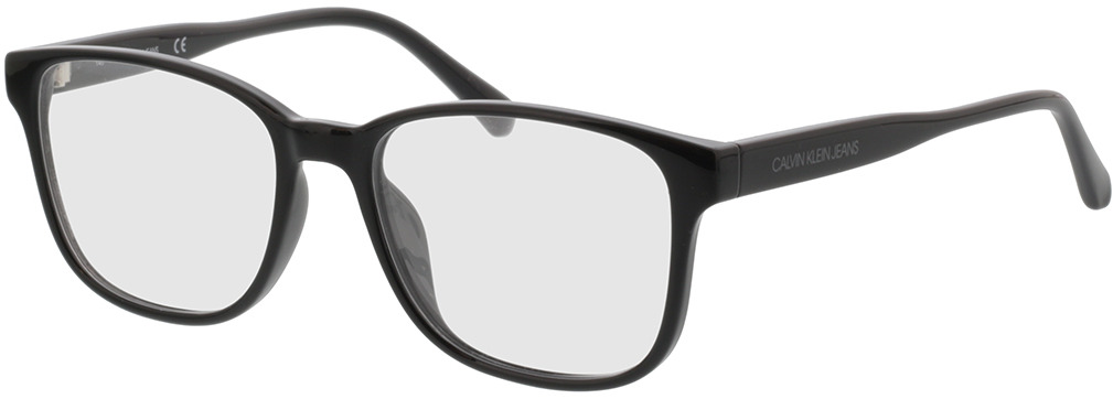 Picture of glasses model Calvin Klein Jeans CKJ19507 001 53-17 in angle 330