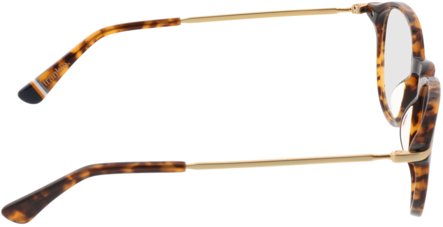 Picture of glasses model Superdry SDO Frankie havanna 102 48-21 in angle 90