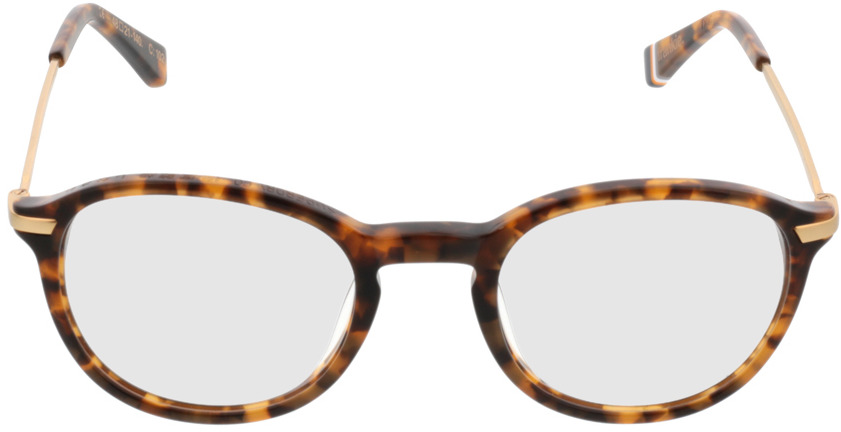 Picture of glasses model Superdry SDO Frankie havanna 102 48-21 in angle 0