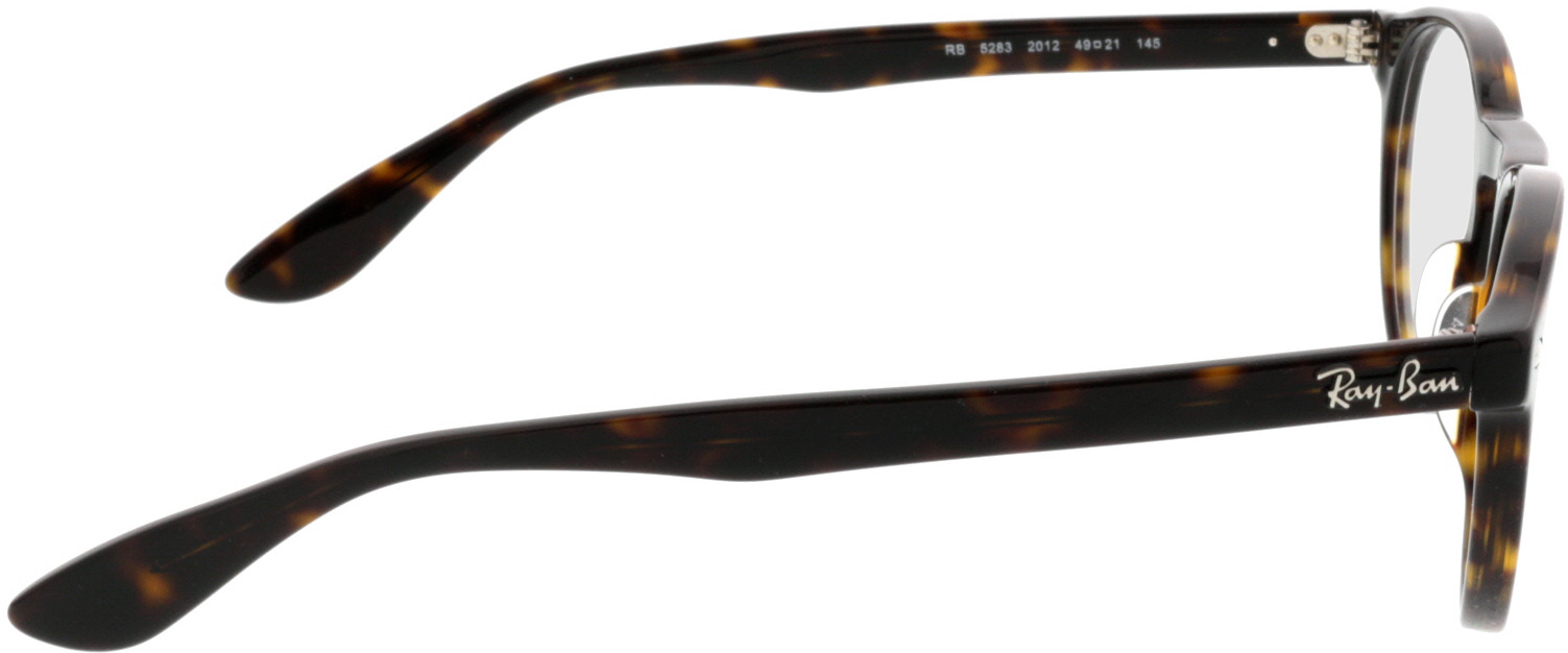 Picture of glasses model Ray-Ban RX5283 2012 49-21 in angle 90