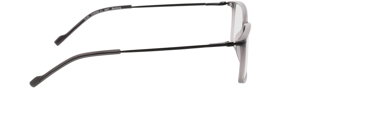 Picture of glasses model Bandung Cinzento in angle 90