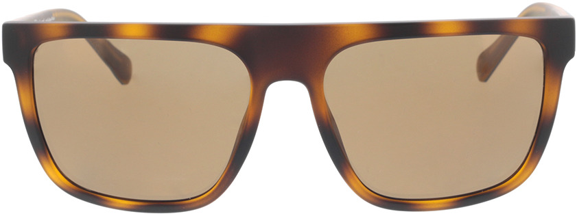 Picture of glasses model Timberland TB9253 52H 58-17 in angle 0
