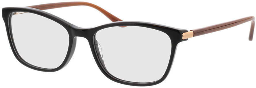 Picture of glasses model Terra-schwarz/braun in angle 330