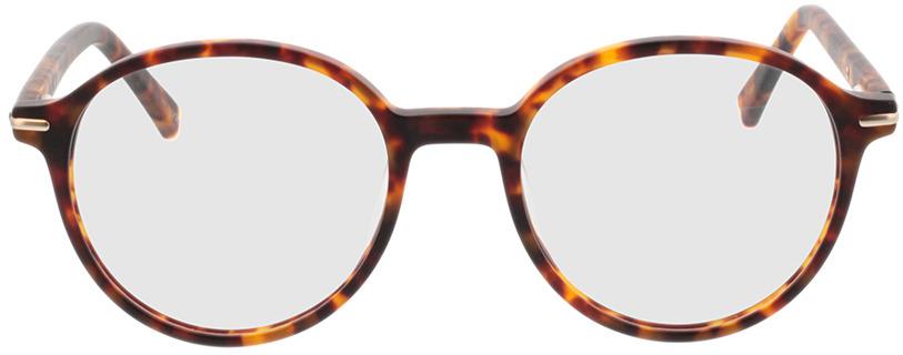Picture of glasses model Borno-matt havana/matt gold in angle 0