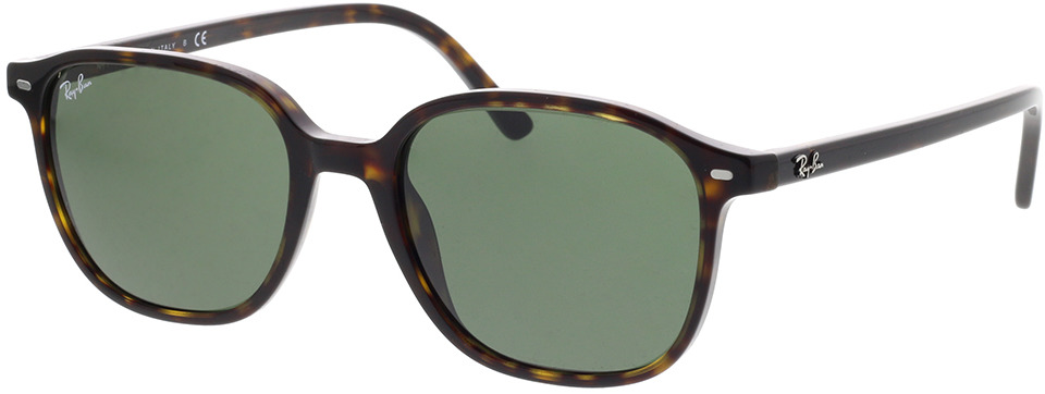 Picture of glasses model Ray-Ban Leonard RB2193 902/31 53-18