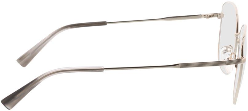 Picture of glasses model Selene-silber/grau horn in angle 90