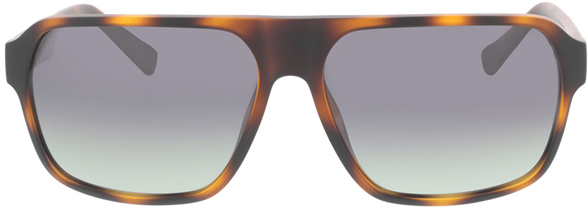Picture of glasses model Timberland TB9254 52R 61-15 in angle 0
