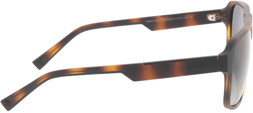 Picture of glasses model Timberland TB9254 52R 61-15 in angle 90