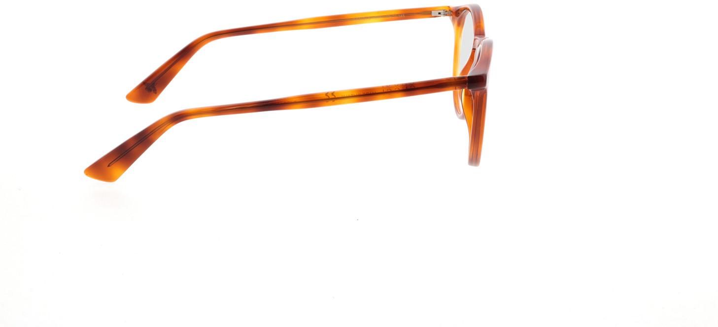 Picture of glasses model Gucci GG0121O-003 49-21 in angle 90