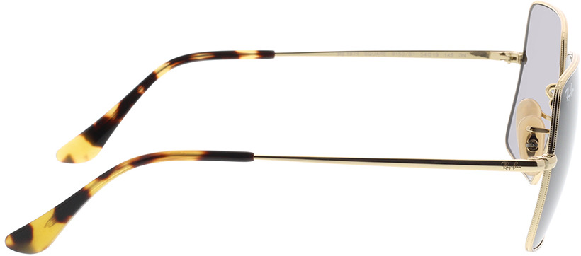 Picture of glasses model Ray-Ban RB1971 9150B1 54-19 in angle 90