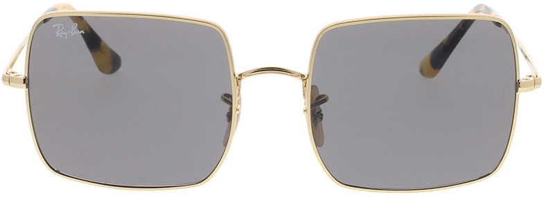 Picture of glasses model Ray-Ban RB1971 9150B1 54-19 in angle 0