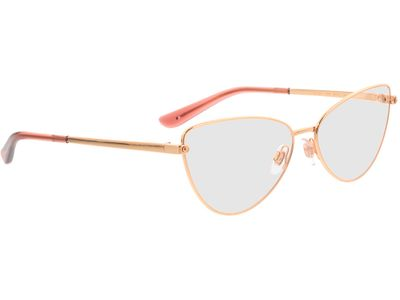 Brille Dolce&Gabbana DG1321 1298 58-15