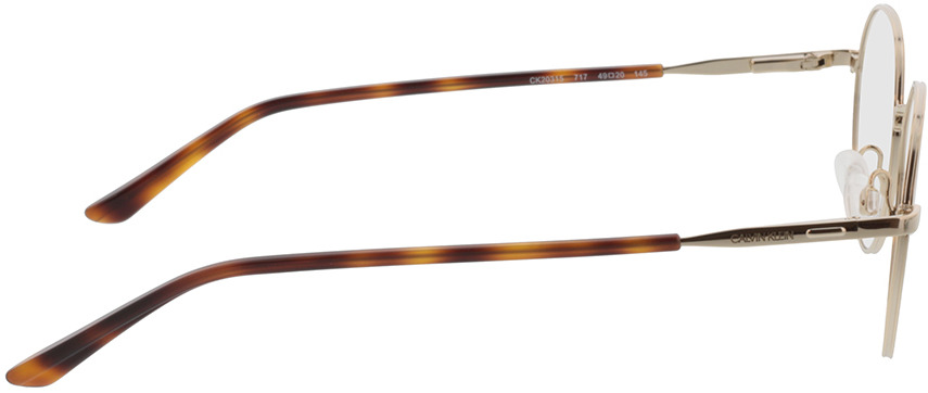 Picture of glasses model Calvin Klein CK20315 717 49-20 in angle 90