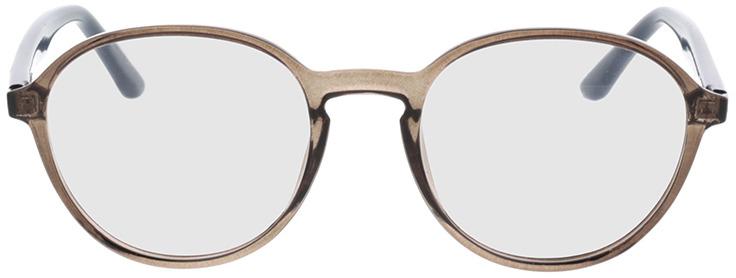 Picture of glasses model Decio-grau transparent in angle 0