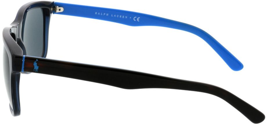 Picture of glasses model Polo PH4098 556387 57-18 in angle 270