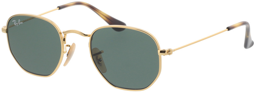 Picture of glasses model Ray-Ban Junior Hexagonal RJ9541SN 223/71 44-19 in angle 330
