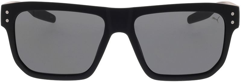 Picture of glasses model Puma PU0246S-001 55-16 in angle 0