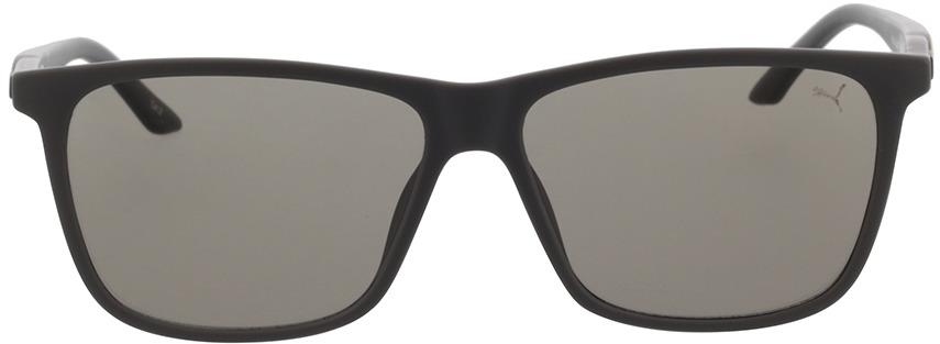 Picture of glasses model Puma PU0322S-002 58-14 in angle 0