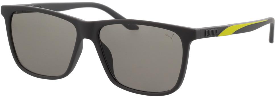 Picture of glasses model Puma PU0322S-002 58-14 in angle 330