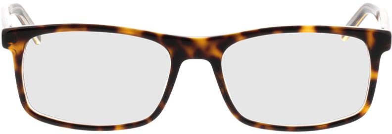 Picture of glasses model Hugo HG 1004 KRZ 54-17 in angle 0