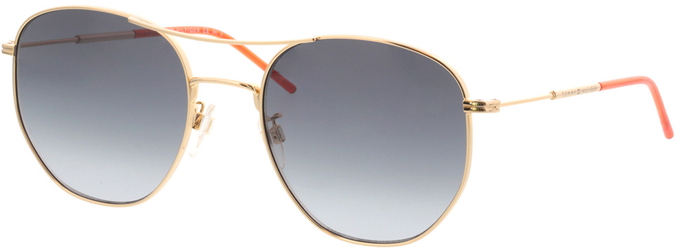 Picture of glasses model Tommy Hilfiger TH 1619/G/S J5G 57-21 in angle 330