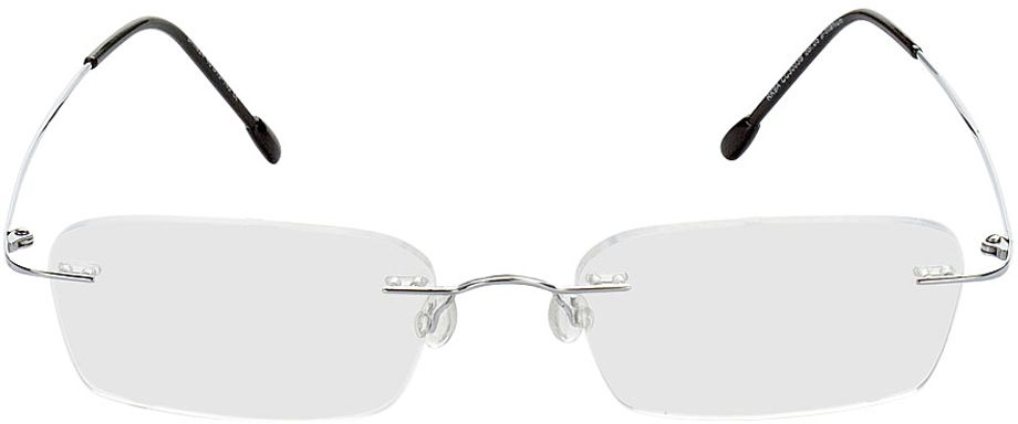 Picture of glasses model Davos-silber in angle 0
