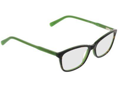 Brille Winnipeg-braun-meliert/grün