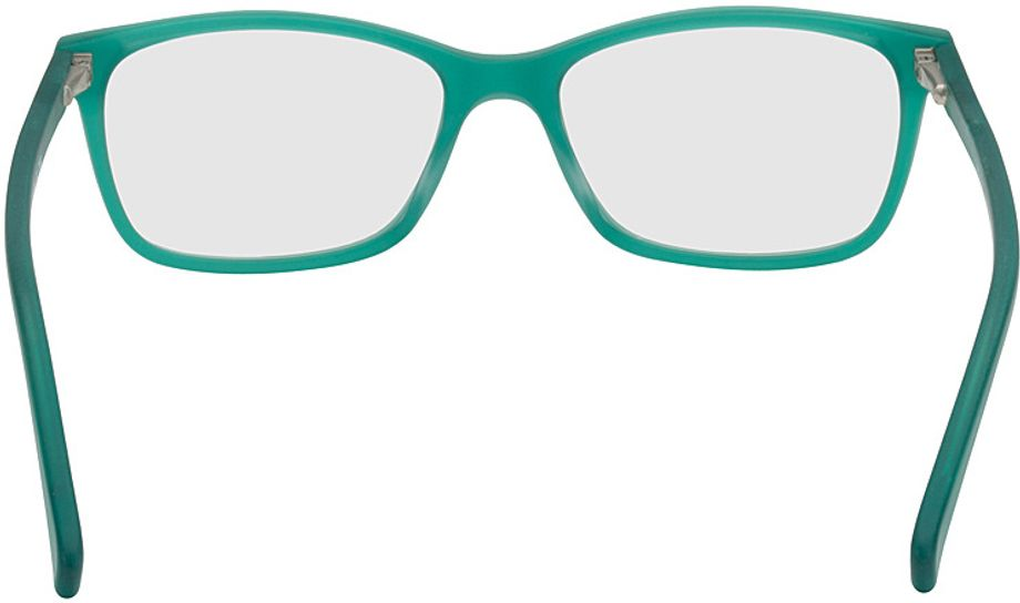 Picture of glasses model Brüssel-turquoise_transparent in angle 180