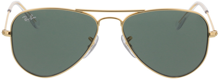 Picture of glasses model Ray-Ban Junior Aviator RJ9506S 223/71 52-14 in angle 0