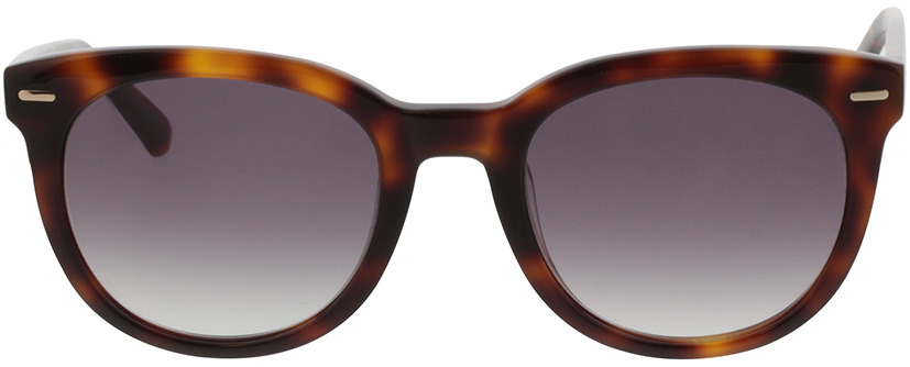 Picture of glasses model Calvin Klein CK20537S 240 51-21 in angle 0