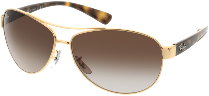 Picture of glasses model Ray-Ban RB3386 001/13 63-13 in angle 330
