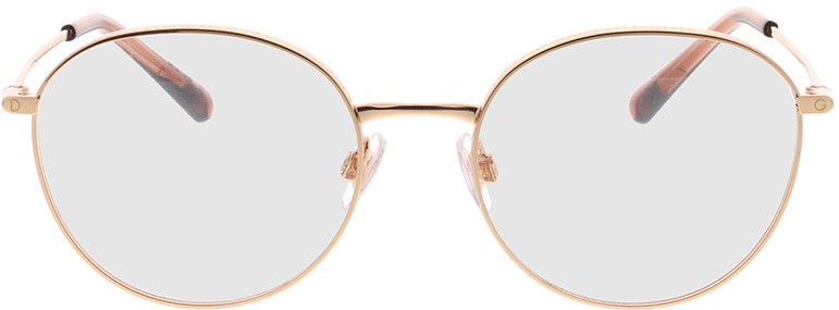 Picture of glasses model Dolce&Gabbana DG1322 1298 53-18 in angle 0