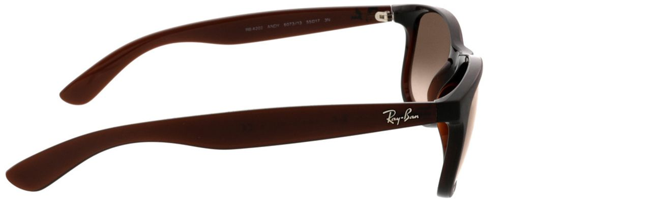Picture of glasses model Ray-Ban Andy RB4202 607313 55-17 in angle 90