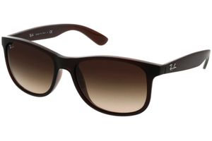 Ray-Ban Andy RB4202 607313 55-17